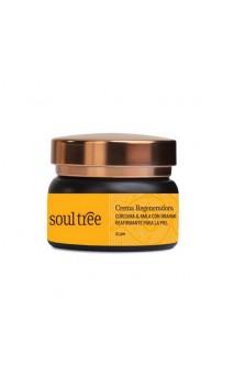 Crema facial ecológica Regeneradora & Antiedad - Cúrcuma & Amla con Brahmi - Soultree - 25 g.
