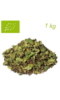 Thé vert Menthe Marrakesh Nights Premium PACK 1 kg - Elements - Thé bio en vrac - Alveus